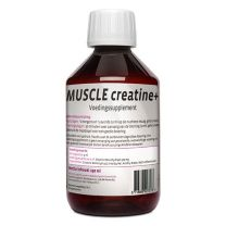 Synofit MUSCLE creatine