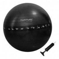 Tunturi Tunturi Gymball Anti burst 65 cm